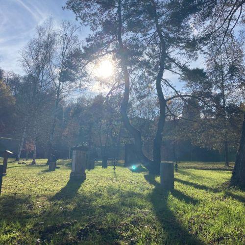 Friedhof_2020_1.jpeg