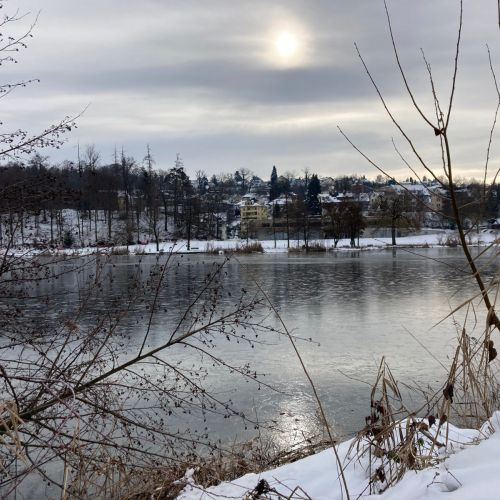 Rotsee_2020_21_Winter.jpeg