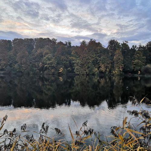 Rotsee_2020_10.jpg