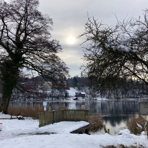 Rotsee_2020_20_Winter.jpeg